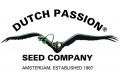 4 суперхита от Dutch Passion : AutoMazar, Blue AutoMazar, Think Different Auto, Auto Xtreme - уже в Украине, в пачках по 3 и по 7 семян!