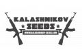Пополнение Kalashnikov seeds